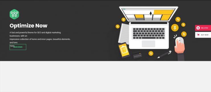 Optimize-premium-SEO-friendly-WordPress-themes-EverestThemes
