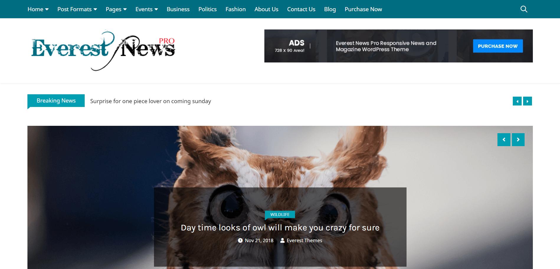 Everest-News-Pro-best-premium-SEO-friendly-WordPress-themes-EverestThemes