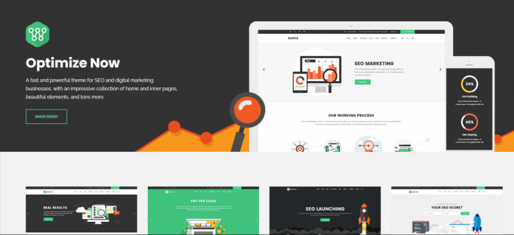 Optimize-best-premium-SEO-friendly-WordPress-themes-EverestThemes