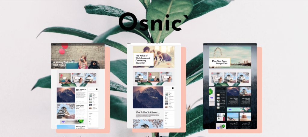 Osnic-top-premium-seo-friendly-WordPress-themes-EverestThemes