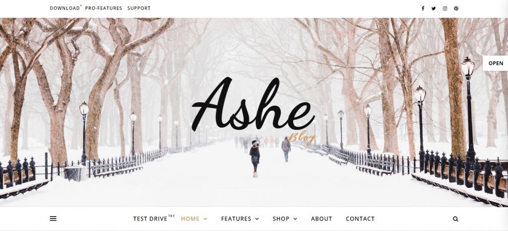 AsheBlog-best-free-responsive-blog-WordPress-themes-EverestThemes