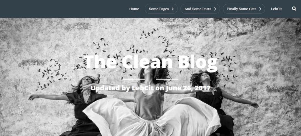 CleanBlog-top-best-free-blog-WordPress-themes-EverestThemes