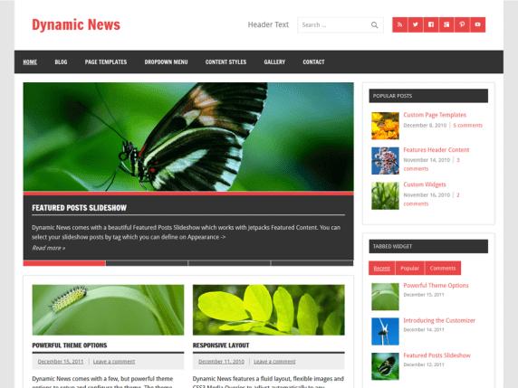 DynamicNewsLite-top-best-free-responsive-news-WordPress-theme-EverestThemes