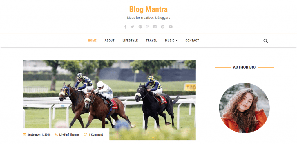 BlogMantra-best-free-WordPress-Themes-for-Personal-Blog-EverestThemes