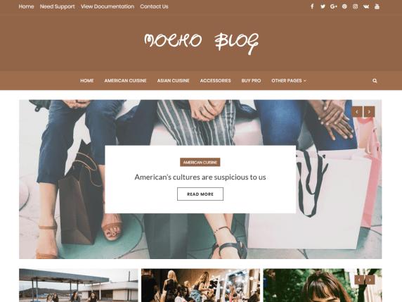 MochoBlog-best-free-blog-WordPress-themes-EverestThemes