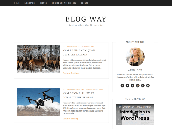 BlogWay-best-free-WordPress-themes-for-business-EverestThemes