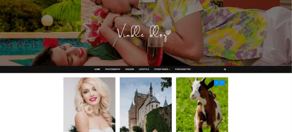 ViableBlog-top-best-WordPress-Themes-for-Personal-Blog-EverestThemes