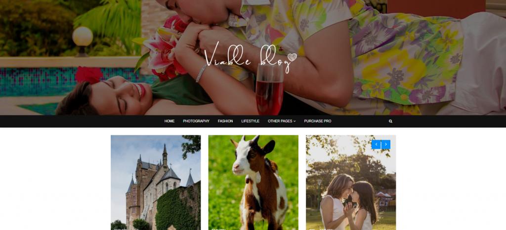 ViableBlog-best-free-WordPress-themes-for-business-EverestThemes