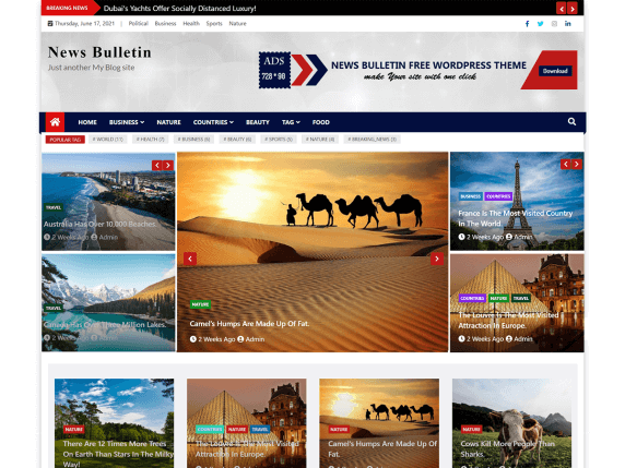 News-Bulletin-best-free-news-WordPress-themes-EverestThemes