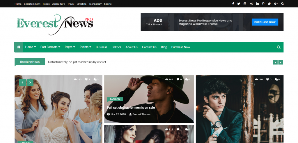 Everest-News-Pro-launching-a-news-website-with-WordPress-EverestThemes